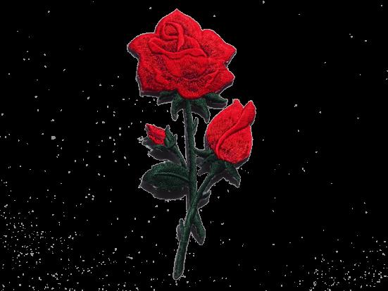 naszywki różane